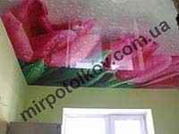 печать цветы на натяжном потолке